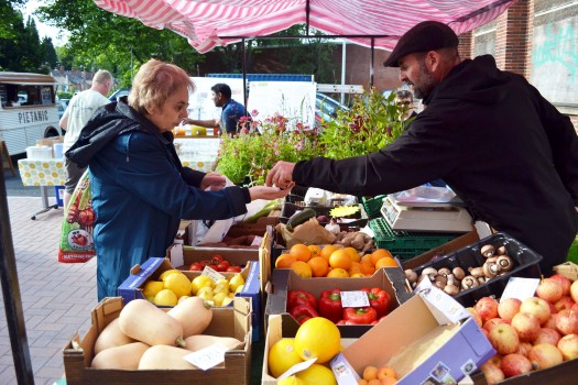 2016_stirchley_market_july_vegetropolis_sale